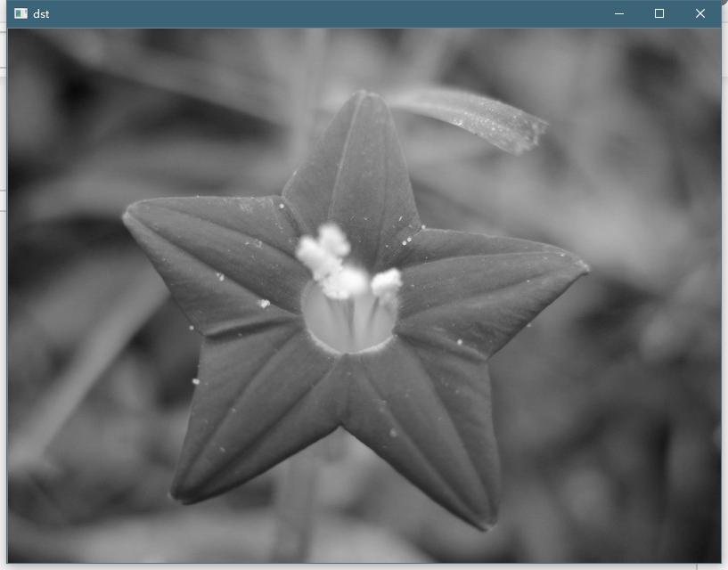 计算机视觉-openCV图片特效&绘制线段文字| Able's Workspace